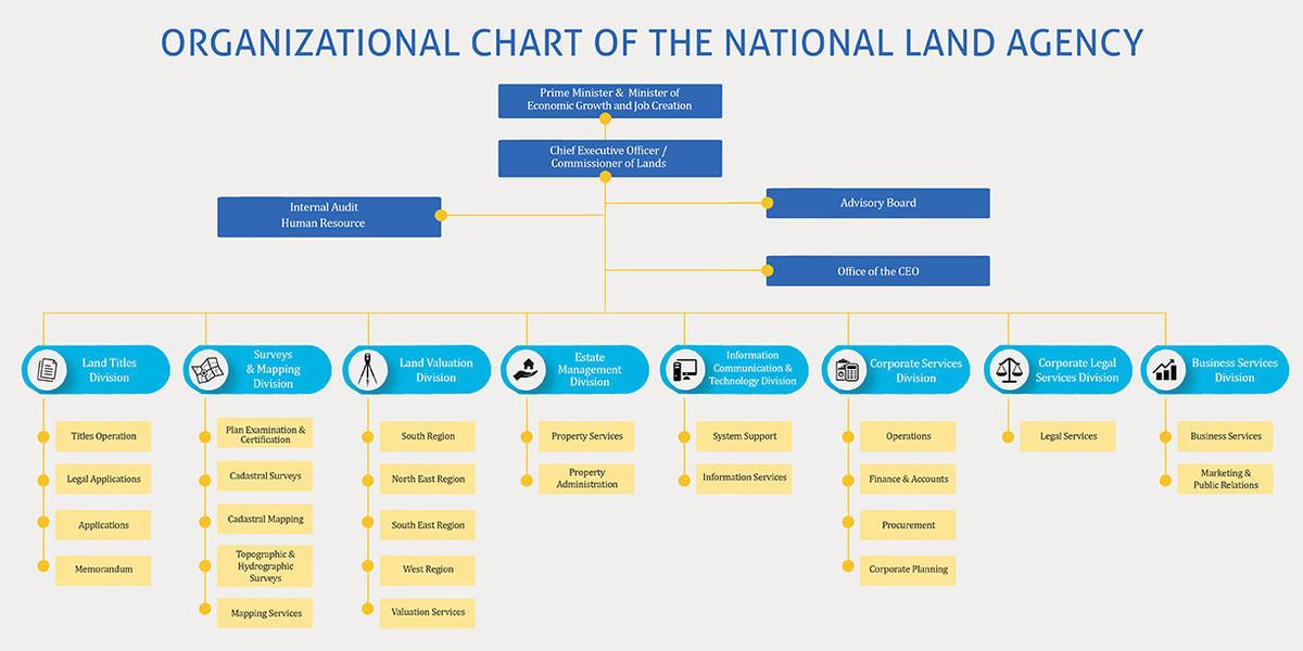 organzational chart